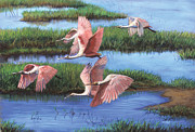 Animals Pastels - Pink Wings over the Everglades by Deb LaFogg-Docherty
