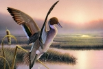 Cattail Paintings - Pintail Duck-3rd Place WI by Daniel Pierce