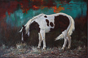 Pinto Horse Paintings - Pinto by Harvie Brown