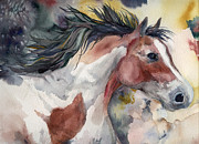 Pinto Paintings - Pinto Spirit by Dotty  Reiman