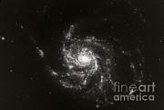 Major Framed Prints - Pinwheel Galaxy, M101 Framed Print by Science Source