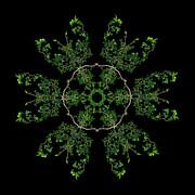 Pinwheel II Print by Debra and Dave Vanderlaan