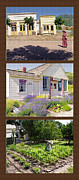 Agriculture Mixed Media Posters - Pioneer Series Triptych Poster by Steve Ohlsen