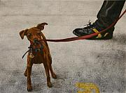 Shoe Paintings - Pisa Puppy by Karen  Peterson