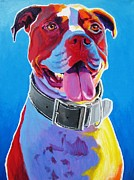 Dawgart Framed Prints - Pit Bull - Buster Framed Print by Alicia VanNoy Call