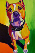 Bull Terrier Paintings - Pit Bull - Fifty by Alicia VanNoy Call