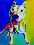 Bull Terrier Paintings - Pit Bull - Hercules by Alicia VanNoy Call