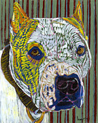 Web Gallery Prints - Pit Bull Portent Print by David  Hearn