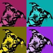 Dog Art Painting Metal Prints - Pit Face Metal Print by Dean Russo