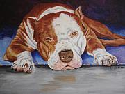 Pitbull Relaxing Print by Laura Bolle