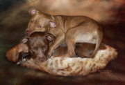 Pit Bull Mixed Media Metal Prints - Pitbulls - The Softer Side Metal Print by Carol Cavalaris