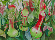 Marcus Paintings - Pitcher Plants by Carol Marcus