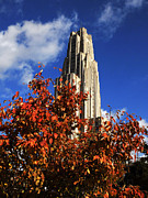 Florida State Posters - Pittsburgh Autumn Leaves at the Cathedral of Learning Poster by Will Babin
