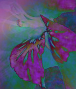 Striking Photography Digital Art Prints - Pixie Spring Fantasy Print by Debra     Vatalaro