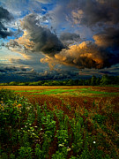 Geographic Prints - Places in the Heart Print by Phil Koch