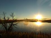 Placid Glass Lake At Dawn Print by Brian  Maloney