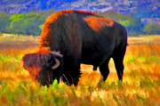 Bison Mixed Media Framed Prints - Plains Buffalo Framed Print by JohnD Smith