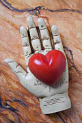 Heart Stone Posters - Plam reader hand holding red stone heart Poster by Garry Gay