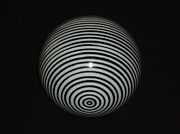 Op Art Photo Posters - Planet Zebra Poster by Douglas Fromm