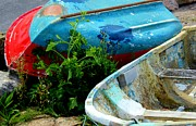 Abandoned Boats Prints - Plant Between Us Print by Rene Triay Photography