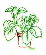Potted Drawings Metal Prints - Plant Metal Print by Judith Herbert