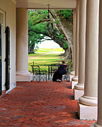 Oak Alley Plantation Photo Prints - Plantation View Print by Perry Webster