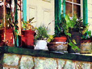 Designs By Susan Prints - Plants on Porch Print by Susan Savad