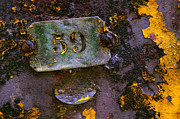 Corrosion Photos - Plate 59 by Carlos Caetano