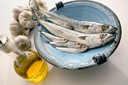 3 Fish Posters - Plate Of Mackerel Poster by Erika Craddock