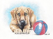 Puppy Drawings - Play with me by Satu Manninen