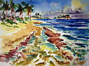 Puerto Rico Paintings - Playa Grande by Barbara Richert