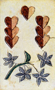 Applique Posters - PLAYING CARD, c1700 Poster by Granger