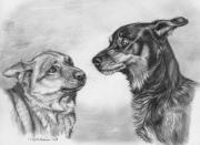 Graphite Framed Prints - Playing Dogs Emotions Framed Print by Svetlana Ledneva-Schukina
