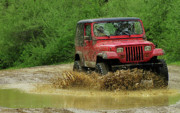 Jeep Prints - Playing in the Mud Print by Scott Hovind