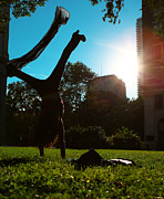Break Dance Prints - Playing with the Sun - Philadelphia - Pensilvania - Sunset Print by Lee Dos Santos