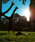 Playing With The Sun - Philadelphia - Pensilvania - Sunset Print by Lee Dos Santos
