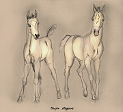 Horse Drawings Prints - Playmates of Summer Print by Tarja Stegars