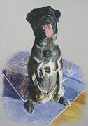 Pastel Dog Paintings - Please by Dana  Bellis