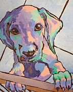 Dog Paw Paintings - Please Let Me In by Sandy Tracey
