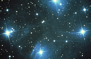 Star Clusters Posters - Pleiades Star Cluster Poster by Science Source