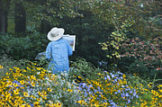 Plein Air Art - Plein Air Artist by John Greim