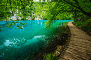 Plitvice Lakes National Park Posters - Plitvice Lakes National Park Poster by Kelly Cheng Travel Photography