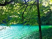 Plitvicka Jezera  Blue Lake Print by MB Matthews