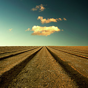 Vanishing Point Posters - Ploughed Field And Sky Poster by Paul McGee
