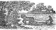 19th Century America Prints - PLOUGHING, 19th CENTURY Print by Granger