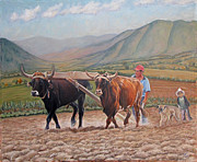Mexican Landscapes Prints - Ploughing in Ocotlan Print by Judith Zur