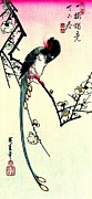 Magpies Tapestries Textiles - Plum Blossoms and Long-tailed Magpie 1844 by Padre Art
