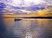 Ferry Prints - Plum Island Ferry Print by Vicki Jauron