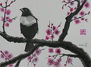 Plum Blossoms Paintings - Plum Tree Blossoms by Robert P Hedden