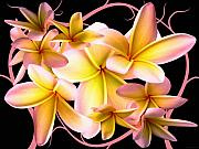 Vines Mixed Media Prints - Plumeria and vines Print by Evelyn Patrick